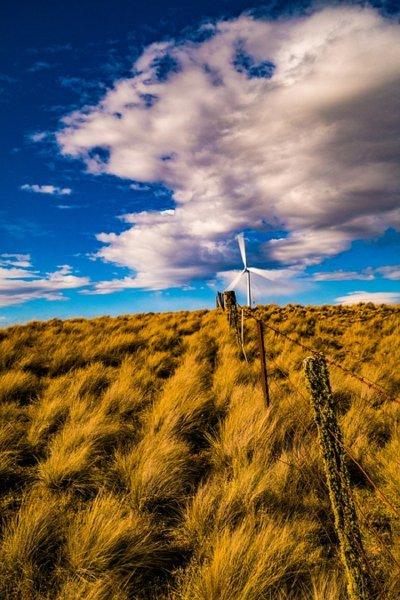 Ученые: Глобальное потепление вернет Землю в палеогеновый период