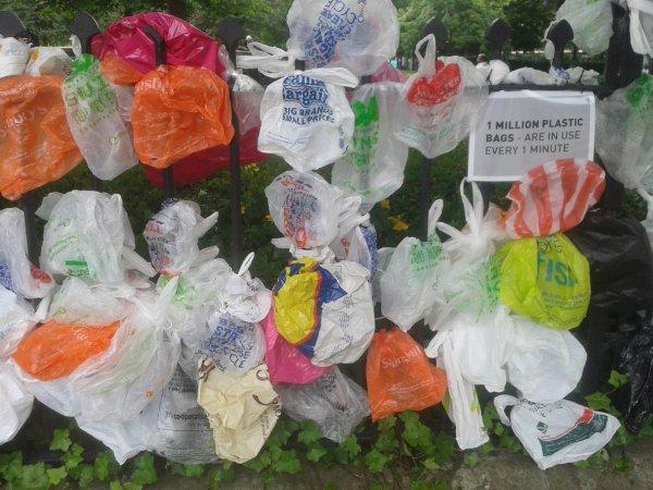 Новая Зеландия поэтапно откажется от использования одноразовых пластиковых пакетов