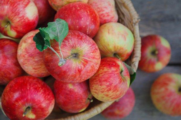 В Роскачестве рассказали как выбирать яблоки без пестицидов