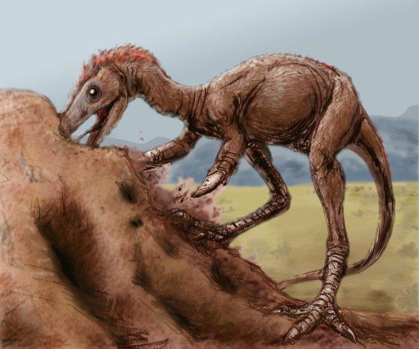 В Китае нашли останки птицеподобного динозавра