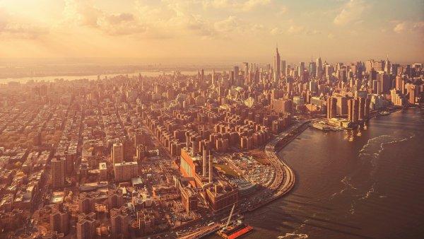 Снижается интеллект и гибнут птицы: Города уверенно уничтожают жизнь на Земле