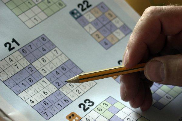 Учёные: Логические игры не делают человека умнее