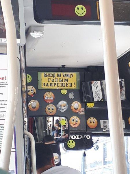Воронежским пассажирам запретили выходить из автобуса голышом
