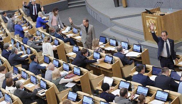 Госдума: Об отмене митингов должны уведомлять минимум за день