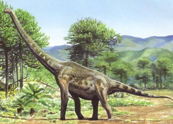 Палеонтологи нашли останки гигантского динозавра в ЮАР