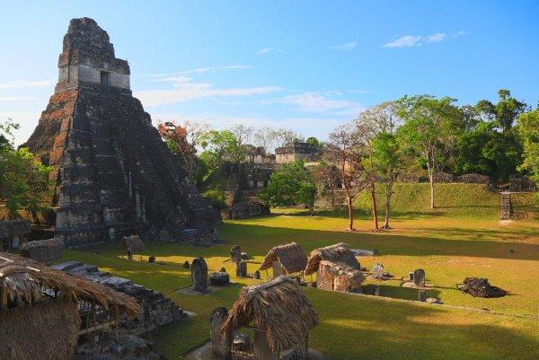 Археологи раскрыли новые удивительные подробности цивилизации майя