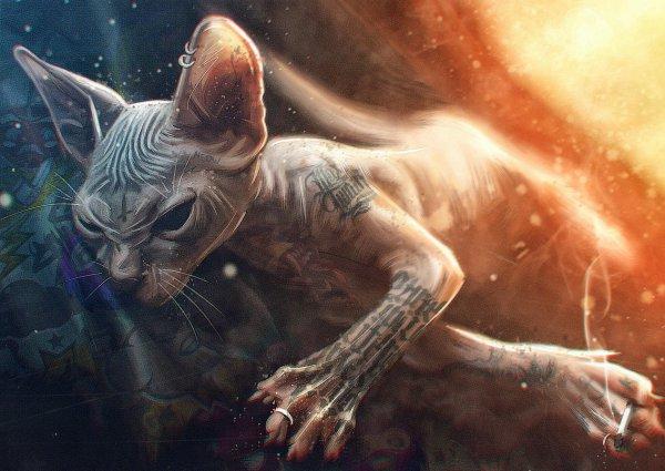 Екатеринбургский татуированный кот и его хозяин стали звёздами интернета
