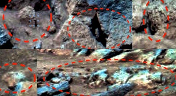 На Марсе заметили черепа пришельцев и инструменты