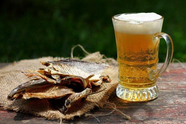 Пьяные и здоровые: Пиво снижает риски импотенции