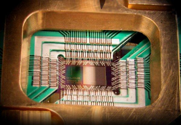 Ученые разработали первую искусственную жизнь на квантовом компьютере