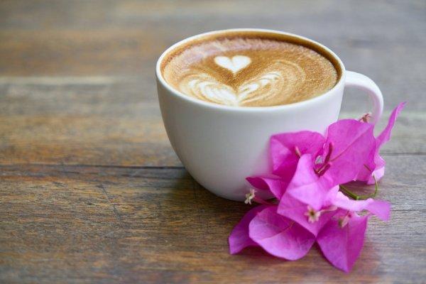 Врачи: Растворимый кофе наносит значительный вред организму человека