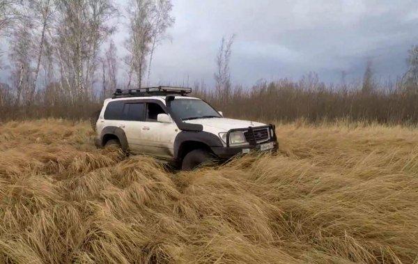 «Агрессия и сила»: В сети показали «злой» Land Cruiser для охотников