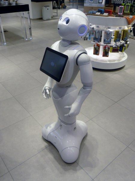Роботы пришли к пониманию определений «своё» и «чужое»